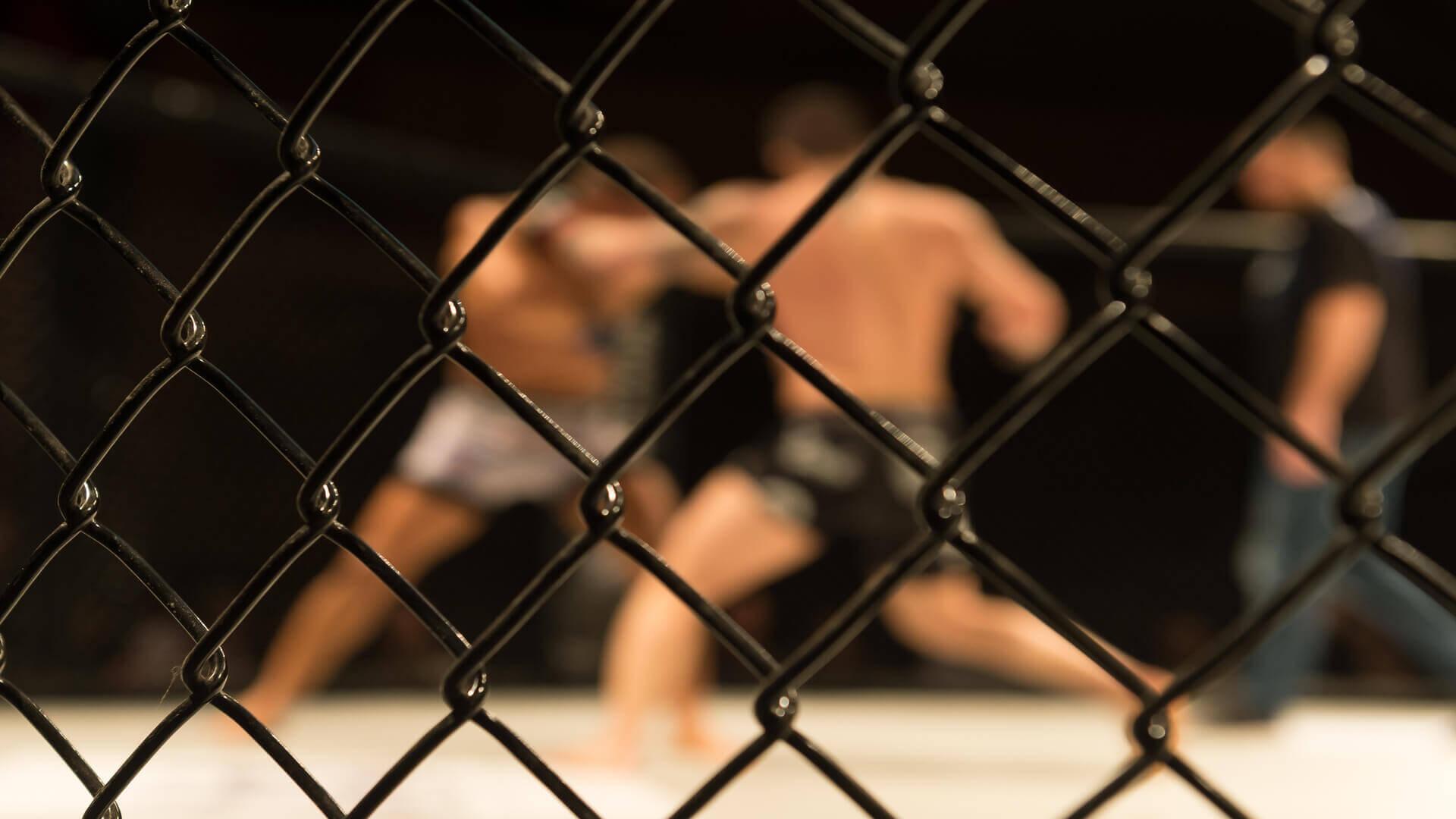 Walka MMA w klatce - mieszane sztuki walki